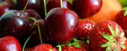 Vybrané tuzemské druhy a odrůdy ovoce