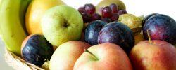 Ekologické nároky jednotlivých skupin ovocných odrůd