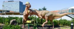 DinoPark se po zimní pauze znovu otevírá návštěvníkům