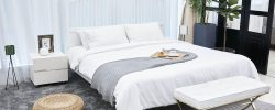 Některé rostliny do ložnice patří a dokonce pomáhají k lepšímu spánku