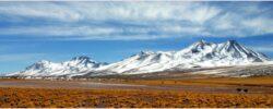 Chile není známé jen díky pepři, objevte jeho nevšední zajímavosti